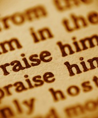 Praise him Praise him text from Bible